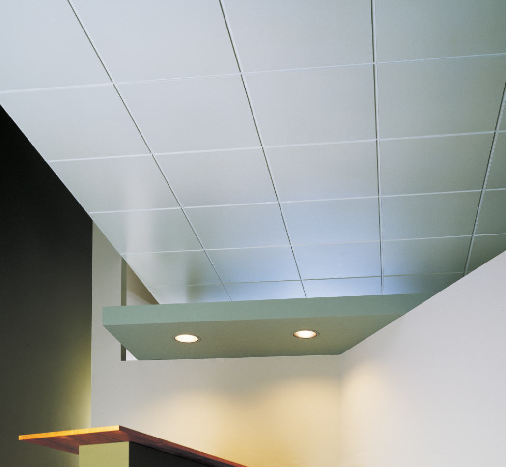 Pictures of ceiling tiles