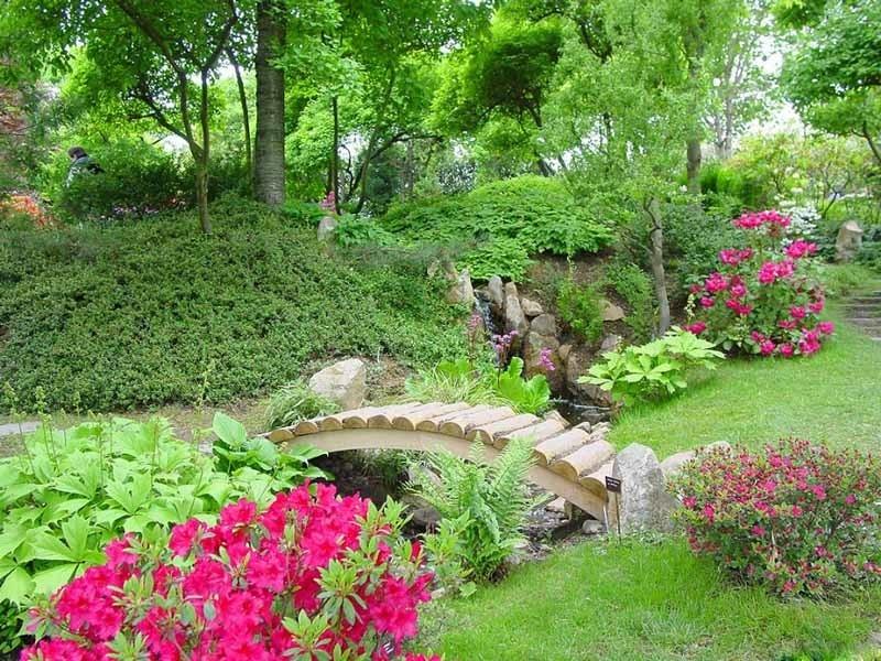 Как выбрать цветы для сада