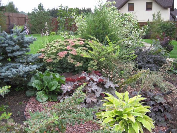 Озеленения и благоустройства огорода